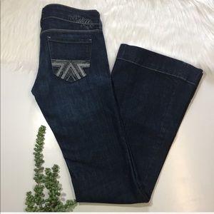 American Eagle Flare Leg Jeans | Size 2
